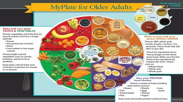 Your idea food guide pyramid for older adults