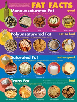 Fat Facts -- Poster