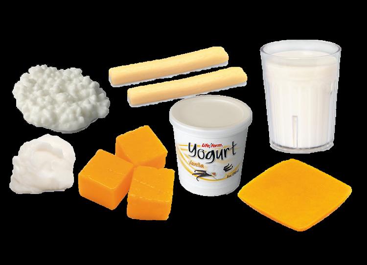 Dairy Foods Model Kit